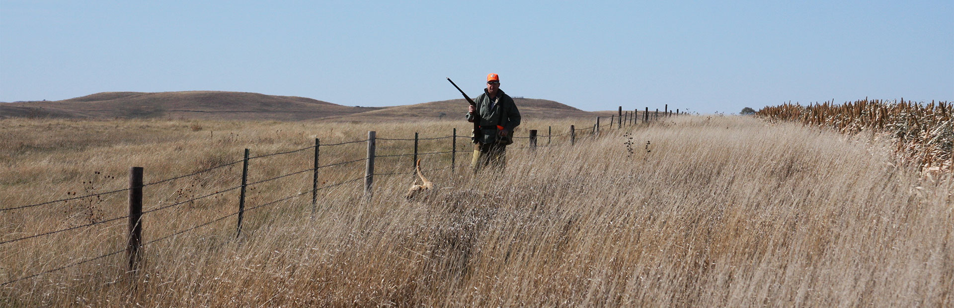Small Group Pheasant Hunts